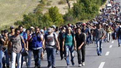"""صورة قرار اوروبي غير مسبوق بشأن اللاجئين السوريين الفـ.ـارين من """"جيش الأسد"""""""