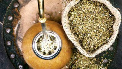 صورة المتة: المشروب الطبيعي الشهير.. كيف تتم صناعة المتة وماهي فوائدها