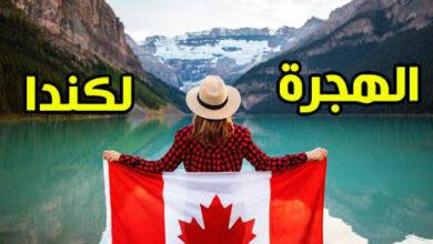 صورة بشرى سارة.. بعد فتح الهجرة إلى كندا  كيفية تسجيل السوريين في تركيا إلى الهجـ.ـرة إلى كندا؟