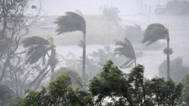 صورة عاجل: الأرصاد الجوية تحذر من عاصفة رياح قوية قد تؤدي الى شلع الأشجار وأسطح مباني في هذه الولاية