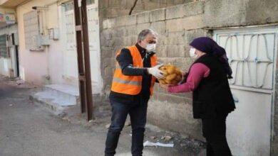 صورة قد يصلكم الدور..بلدية تركية توزع 750 طناً من أكياس البطاطا على السكان