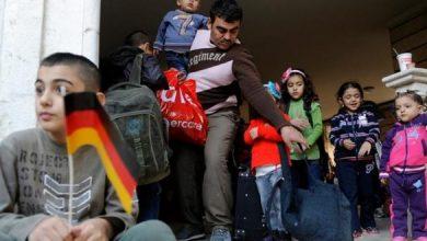 صورة رقم كبير.. ألمانيا تزف بشرى سارة للسوريين وتكشف عن التفاصيل