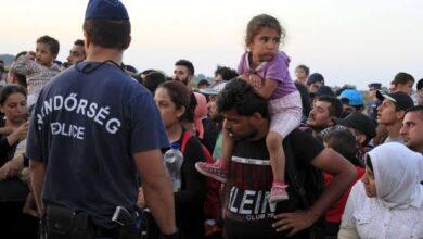 صورة مسؤول تركي يجيب ويكشف عن خبر هام لجميع السوريين في تركيا بشأن العودة الإجبارية للسوريين إلى بلادهم