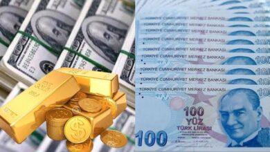 صورة 100 دولار كم ليرة تركية تساوي.. تطورات عاجلة و ارتفاع بسعر الليرة التركية والذهب مع بداية يوم الاربعاء