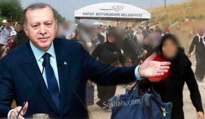 صورة عودة السوريين إلى بلدهم .. تصريح عاجل من الرئيس أردوغان