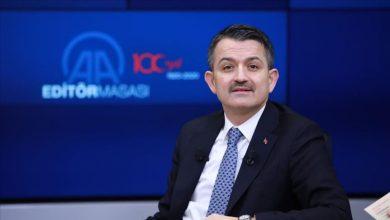 صورة بعد 16 يوما من الكفاح.. وزير تركي يزف بشرى سارة لسكان تركيا ويعلن النصر