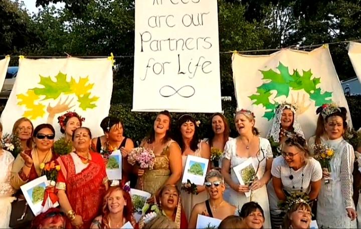 صورة بعد البقر والكلاب… عشرات النساء في بريطانيا يتزوجن الأشجار والسبب !!