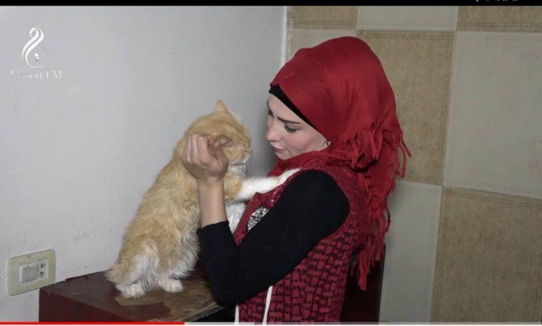 صورة باعت سيارتها وأثاثها لإطعامهم.. فتاة دمشقية تربي ١٢٠ قطا وكلبة وتروي قصتها معهم (فيديو)